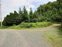 Terrain à vendre à Saint-Faustin/Lac-Carré, Laurentides, Route  117, 22591292 - Centris