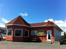 Bâtisse commerciale à vendre à Thetford Mines, Chaudière-Appalaches, 3421, boulevard  Frontenac Est, 13564268 - Centris