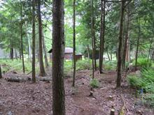 Lot for sale in Saint-Lin/Laurentides, Lanaudière, 1011, Rue  Saint-Laurent, 17670444 - Centris