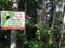 Terrain à vendre à Sainte-Adèle, Laurentides, Chemin du Lac-Renaud, 24858795 - Centris