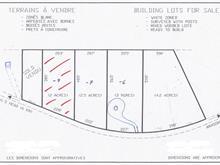 Terrain à vendre à Potton, Estrie, Chemin de Vale Perkins, 11224408 - Centris
