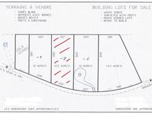Lot for sale in Potton, Estrie, Chemin de Vale Perkins, 16965317 - Centris