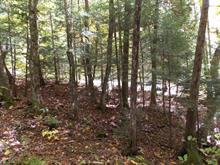 Terrain à vendre à Chénéville, Outaouais, Chemin  Latulippe, 17348999 - Centris