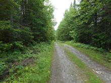 Land for sale in Saint-Athanase, Bas-Saint-Laurent, Chemin de la Rivière-Noire, 19270277 - Centris