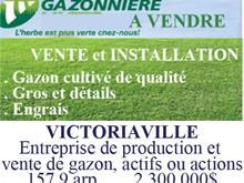 Terre à vendre à Victoriaville, Centre-du-Québec, 248, Rang  Pariseau, 13656440 - Centris