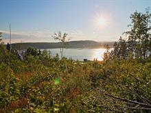 Lot for sale in Port-Daniel/Gascons, Gaspésie/Îles-de-la-Madeleine, Route de la Rivière, 13054398 - Centris