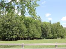Lot for sale in Aylmer (Gatineau), Outaouais, 968, Chemin  Klock, 25968774 - Centris