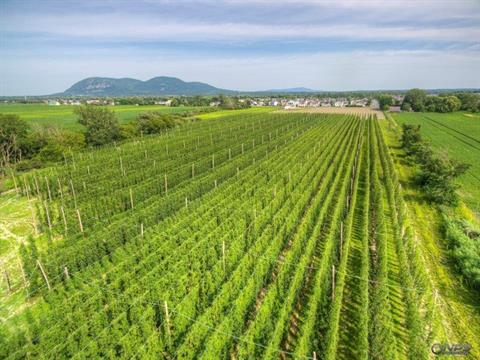 Farm for sale in Beloeil, Montérégie, 260A, boulevard  Yvon-L'Heureux Sud, 25013575 - Centris