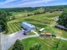 Farm for sale in Compton, Estrie, 490A, Chemin  Ives Hill, 16067450 - Centris