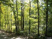 Lot for sale in Notre-Dame-du-Laus, Laurentides, Chemin de l'Opale, 15129371 - Centris