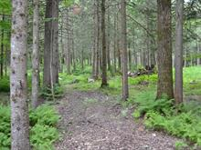 Lot for sale in Stukely-Sud, Estrie, Rue  Jetté, 28952078 - Centris