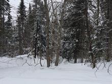 Terrain à vendre à Rivière-Rouge, Laurentides, Montée des Lacs-Noirs, 16406686 - Centris