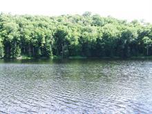 Terrain à vendre à Montcalm, Laurentides, Chemin du Lac-Richer Sud, 18284397 - Centris