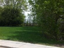 Lot for sale in Brownsburg-Chatham, Laurentides, Rue  Renaud, 13468378 - Centris