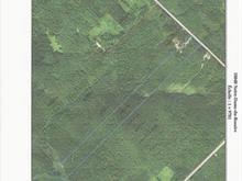 Terre à vendre à Notre-Dame-du-Rosaire, Chaudière-Appalaches, Rang  Saint-Louis, 18850631 - Centris