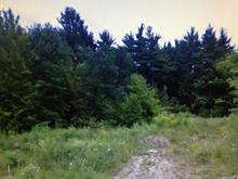Lot for sale in Papineauville, Outaouais, 267, Rue  Laval, 11646538 - Centris
