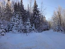 Land for sale in Saint-Faustin/Lac-Carré, Laurentides, Chemin du Lac-Colibri, 9467136 - Centris