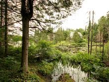 Terrain à vendre à Saint-Adolphe-d'Howard, Laurentides, Chemin du Lac-du-Coeur, 28162139 - Centris