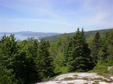 Terrain à vendre à La Malbaie, Capitale-Nationale, Chemin  Saint-Paul, 24948139 - Centris