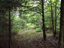 Lot for sale in Saint-Gabriel-de-Brandon, Lanaudière, Rang  Saint-David, 27101511 - Centris