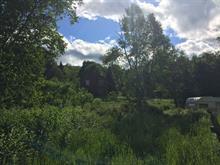 Terre à vendre à La Pêche, Outaouais, 118, Chemin de la Mine, 16960996 - Centris