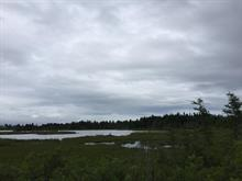 Land for sale in Paspébiac, Gaspésie/Îles-de-la-Madeleine, 4e Avenue Ouest, 26958501 - Centris