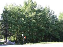 Terrain à vendre à Berthier-sur-Mer, Chaudière-Appalaches, boulevard  Blais Est, 19405645 - Centris