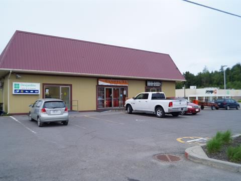 Business for sale in Chertsey, Lanaudière, 7100, Route  125, 21965832 - Centris