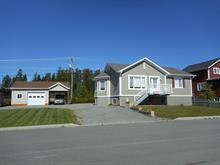 Maison à vendre à Malartic, Abitibi-Témiscamingue, 435, Rue  Armand-Dumas, 28287147 - Centris