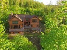 House for sale in Mont-Tremblant, Laurentides, 3125, Chemin des Franciscains, 18995034 - Centris