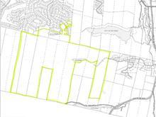 Land for sale in Sainte-Agathe-des-Monts, Laurentides, Chemin  Gascon, 10395477 - Centris