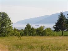 Lot for sale in L'Isle-aux-Coudres, Capitale-Nationale, Chemin des Coudriers, 11324859 - Centris