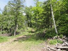 Lot for sale in Cantley, Outaouais, 19, Chemin  Whissell, 14841799 - Centris