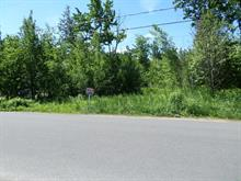 Lot for sale in Mascouche, Lanaudière, Avenue  Garden, 13922512 - Centris