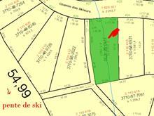 Terrain à vendre à Stoneham-et-Tewkesbury, Capitale-Nationale, 26, Chemin des Skieurs, 13414700 - Centris