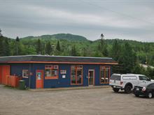 Bâtisse commerciale à vendre à Saint-Faustin/Lac-Carré, Laurentides, 540, Rue de la Pisciculture, 23222463 - Centris