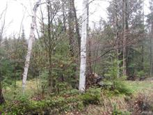 Lot for sale in Dudswell, Estrie, Chemin  Hooker, 17026709 - Centris