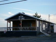 Bâtisse commerciale à vendre à Lac-Etchemin, Chaudière-Appalaches, 1615, Route  277, 13117143 - Centris