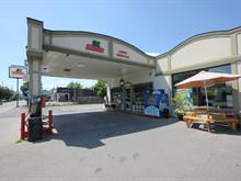 Commerce à vendre à Rigaud, Montérégie, 105, Rue  Saint-Jean-Baptiste Est, 11396717 - Centris