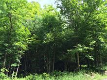 Lot for sale in Lac-Supérieur, Laurentides, Chemin du Tour-du-Lac, 27114863 - Centris