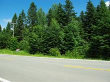 Terrain à vendre à Gaspé, Gaspésie/Îles-de-la-Madeleine, Montée de Wakeham, 23941871 - Centris