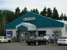 Bâtisse commerciale à vendre à Gaspé, Gaspésie/Îles-de-la-Madeleine, 49, Montée de Corte-Réal, 24848719 - Centris