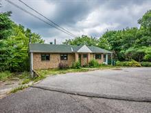 Maison à vendre à Notre-Dame-de-la-Salette, Outaouais, 132, Chemin du Domaine, 9541538 - Centris