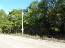 Land for sale in Low, Outaouais, Chemin  McDonald, 15387470 - Centris