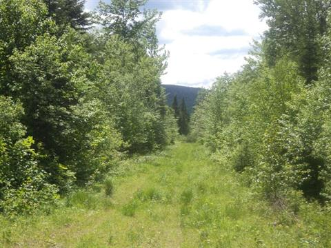Land for sale in Saint-Sébastien, Estrie, 101, 9e Rang, 16396230 - Centris