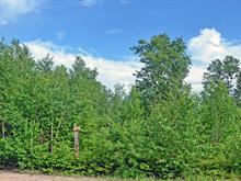 Terrain à vendre à Sept-Îles, Côte-Nord, 436, Rue  Montigny, 21199033 - Centris