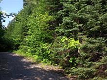 Lot for sale in Val-Morin, Laurentides, Rue des Chênes, 9991617 - Centris