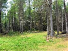 Lot for sale in La Pêche, Outaouais, Chemin  Saint-Louis, 27283841 - Centris