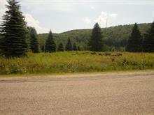 Terrain à vendre à Mont-Tremblant, Laurentides, Route  117, 28108148 - Centris