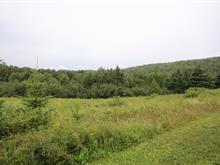 Terrain à vendre à Cascapédia/Saint-Jules, Gaspésie/Îles-de-la-Madeleine, Route de Patrickton, 23521630 - Centris